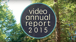 The Video Annual Report 2015