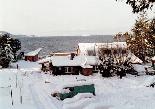 snow1984