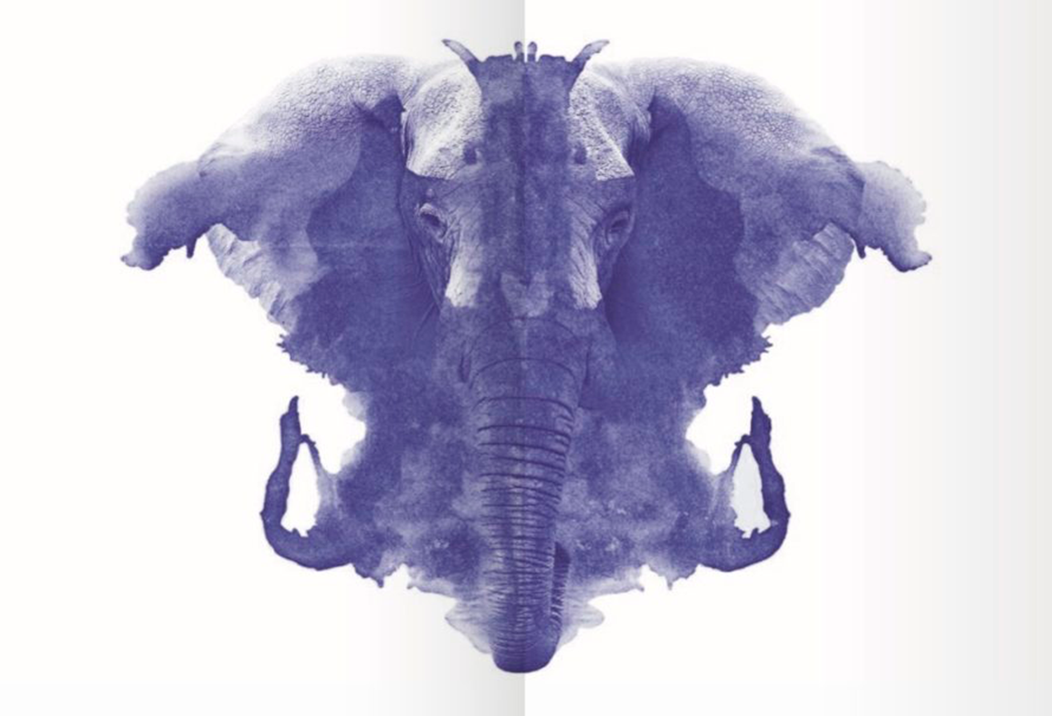 The-Elephant-in-the-Brain-1024x606
