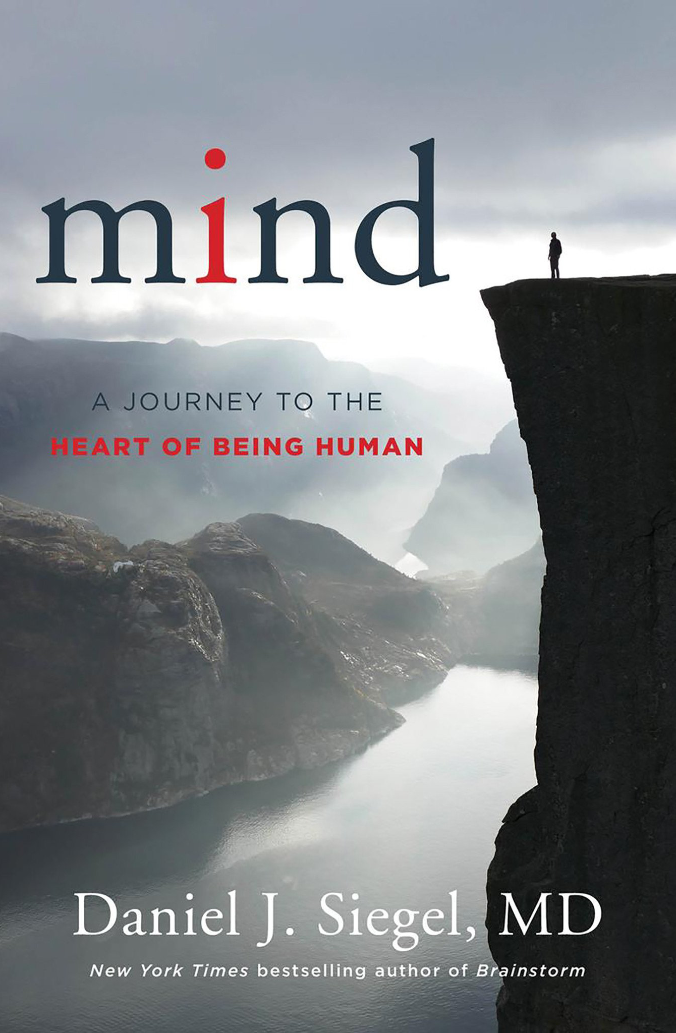 Dr Daniel Siegel book Mind: A Journey to the Heart of Being Human